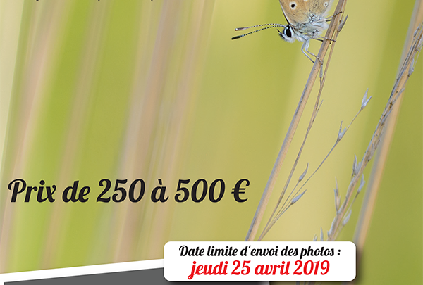 Concours international Photo Nature 2019